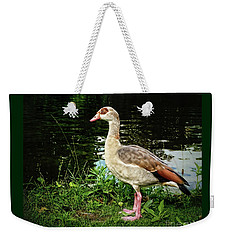 Egyptian Goose At The Pond Weekender Tote Bag