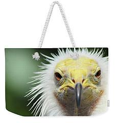 Egyptian Vulture Weekender Tote Bag by David Stasiak