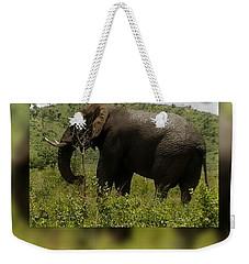 Elephant 4 Weekender Tote Bag