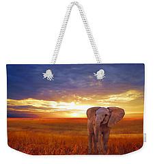 Elephant Baby Weekender Tote Bag