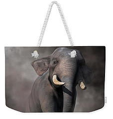 Elephant Weekender Tote Bag by Daniel Eskridge