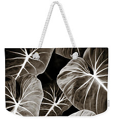 Elephant Ears On Parade Weekender Tote Bag by Marilyn Hunt