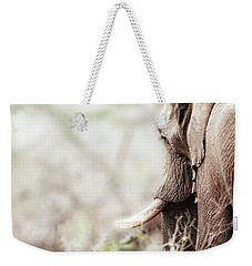 Elephant In Dreamy Woods Weekender Tote Bag
