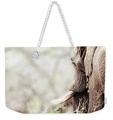 Elephant In Dreamy Woods Weekender Tote Bag