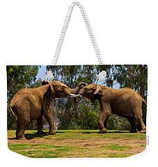 Elephant Play 3 Weekender Tote Bag