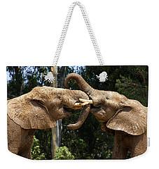 Elephant Play Weekender Tote Bag