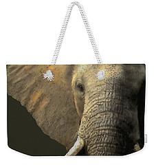 Elephant Portrait Weekender Tote Bag by Kathie Miller