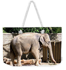Weekender Tote Bag featuring the photograph Elephant by Rose Santuci-Sofranko