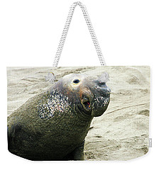 Weekender Tote Bag featuring the photograph Elephant Seal by Anthony Jones