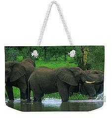 Elephant Shower Weekender Tote Bag