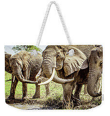 Weekender Tote Bag featuring the photograph Mud Play by Janis Knight