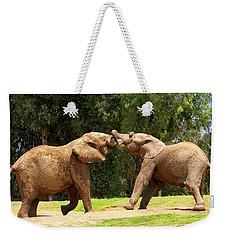 Elephants At Play 2 Weekender Tote Bag