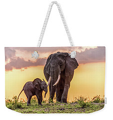 Weekender Tote Bag featuring the photograph Elephants At Sunset by Janis Knight