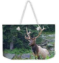 Weekender Tote Bag featuring the photograph Elk 4 by Gary Lengyel