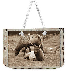 Weekender Tote Bag featuring the photograph Elk by Athala Carole Bruckner