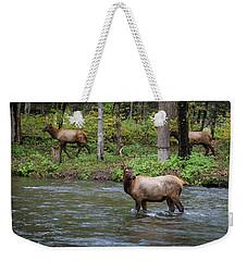 Elks By The Stream Weekender Tote Bag