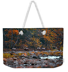 Elk Crossing Weekender Tote Bag