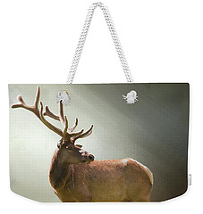 Weekender Tote Bag featuring the photograph Elk In Suns Rays by David and Carol Kelly