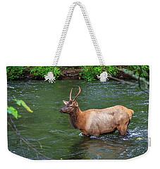 Elk In The Stream 2 Weekender Tote Bag