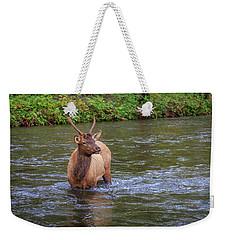 Elk In The Stream 3 Weekender Tote Bag