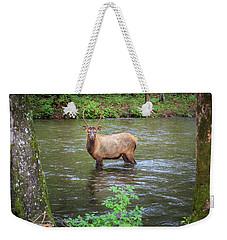 Elk In The Stream Weekender Tote Bag