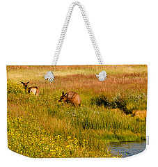 Elk In The Wild Flowers Weekender Tote Bag