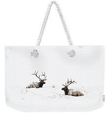 Elk Laying In A Snow Covered Meadow - 9069 Weekender Tote Bag
