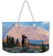 Elk Majesty Weekender Tote Bag