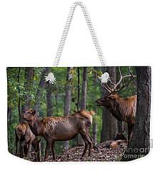 Elk Romance Weekender Tote Bag