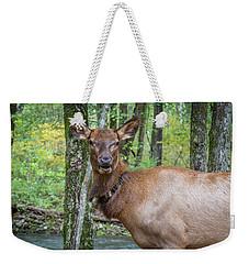 Elk In The Woods 2 Weekender Tote Bag