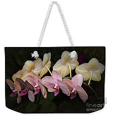 Weekender Tote Bag featuring the photograph Eloise by Elaine Teague