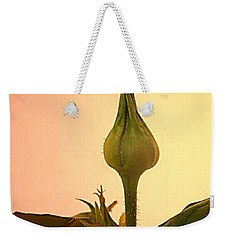 Weekender Tote Bag featuring the photograph Embrace by Joyce Dickens