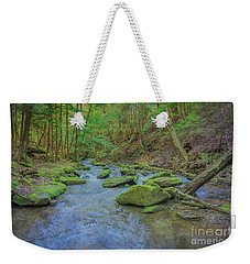 Weekender Tote Bag featuring the digital art Enchanted Forest Three by Randy Steele