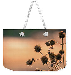 Weekender Tote Bag featuring the photograph End Of Summer by Lisa L Silva