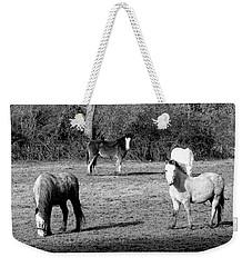 English Horses Weekender Tote Bag