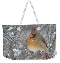 Enjoying The Snow Weekender Tote Bag by Betty-Anne McDonald
