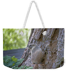 Enjoying The View Weekender Tote Bag
