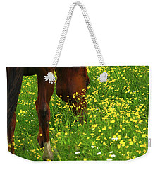 Weekender Tote Bag featuring the photograph Enjoying The Wildflowers by Karol Livote