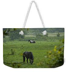 Equine Buddies Weekender Tote Bag