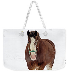 Weekender Tote Bag featuring the photograph Equus Caballus.. by Nina Stavlund