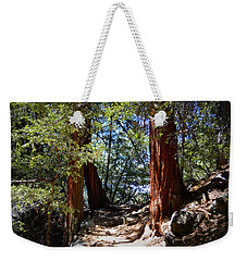 Weekender Tote Bag featuring the photograph Ernie Maxwell Scenic Trail - Idyllwild by Glenn McCarthy