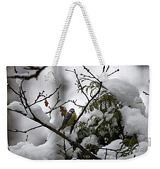 Eurasian Blue Tit In Winter Weekender Tote Bag