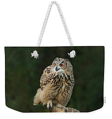 Eurasian Eagle-owl Weekender Tote Bag by CR Courson