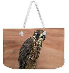 Eurasian Hobby Falcon Weekender Tote Bag by Walter Colvin