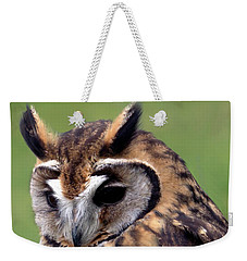 Eurasian Striped  Owl Weekender Tote Bag