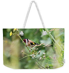European Goldfinch Perched On Flower Stem B Weekender Tote Bag