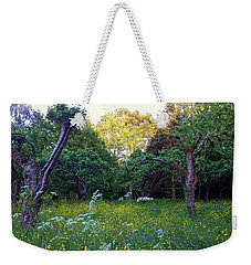 Weekender Tote Bag featuring the photograph Evening Light by Anne Kotan