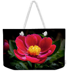 Weekender Tote Bag featuring the photograph Evening Peony by Charles Harden