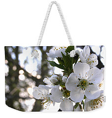 Weekender Tote Bag featuring the photograph Evening Show - Cherry Blossoms by Angie Rea