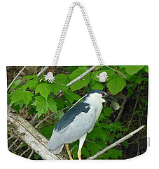 Evening Snack For A Night Heron Weekender Tote Bag by Donald C Morgan